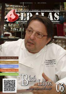 Oldalas magazin 2015 júniusi szám