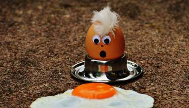 egg-1368259_pixabay