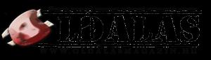 oldalas_magazin_logo_szines