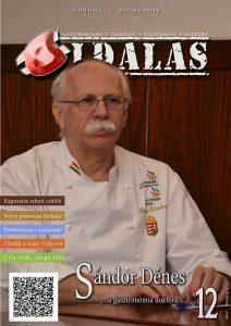 oldalas_magazin_2015_december_szam_cimlap_sandor_denes