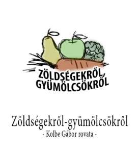 kolbe_gabor_rovat_oldalas_magazin
